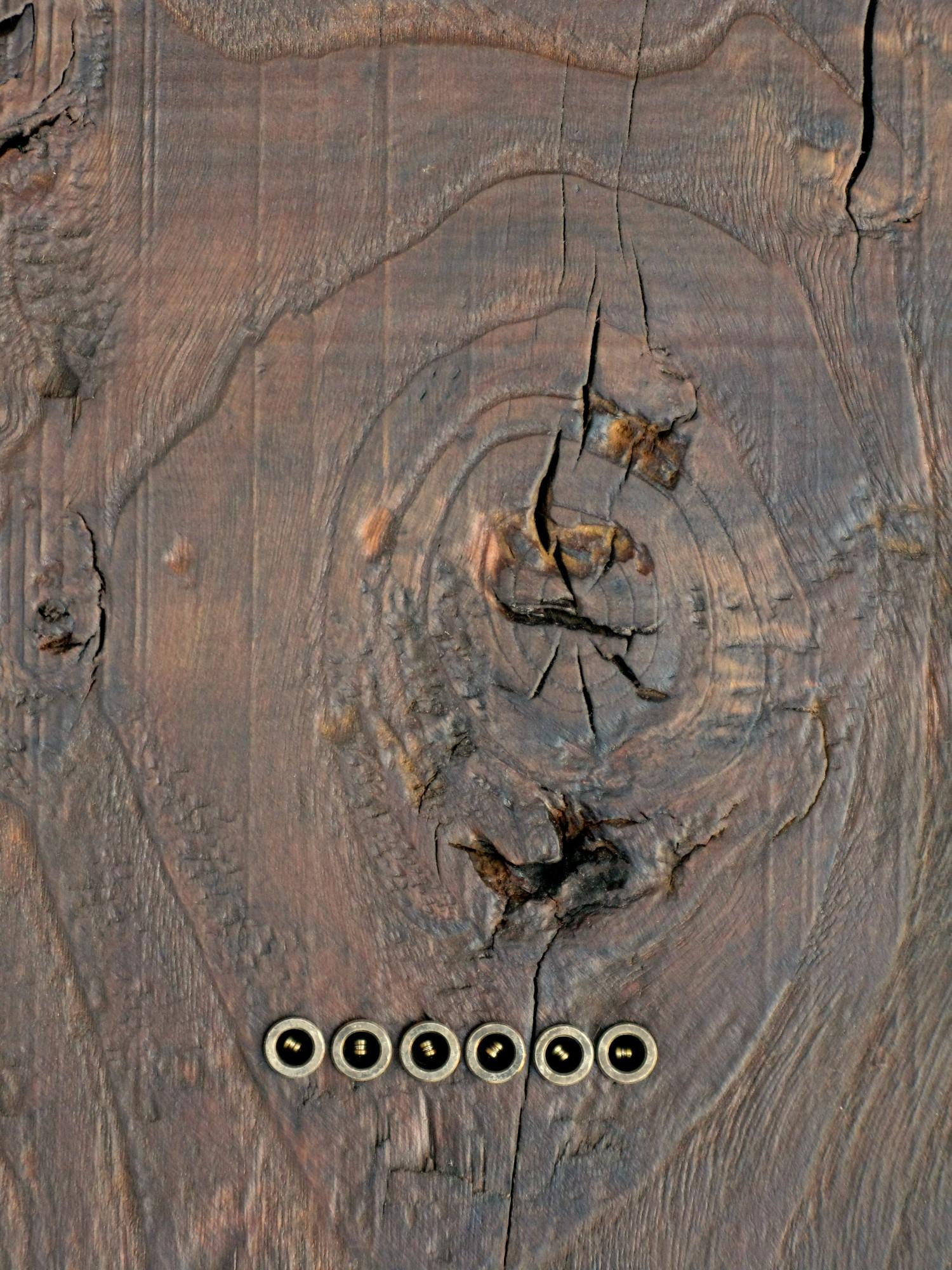 Chitarra telecaster in castagno dettaglio posteriore
