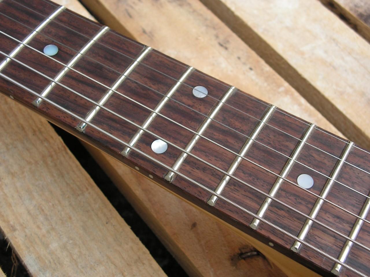 Tastiera in palissandro di una chitarra Telecaster