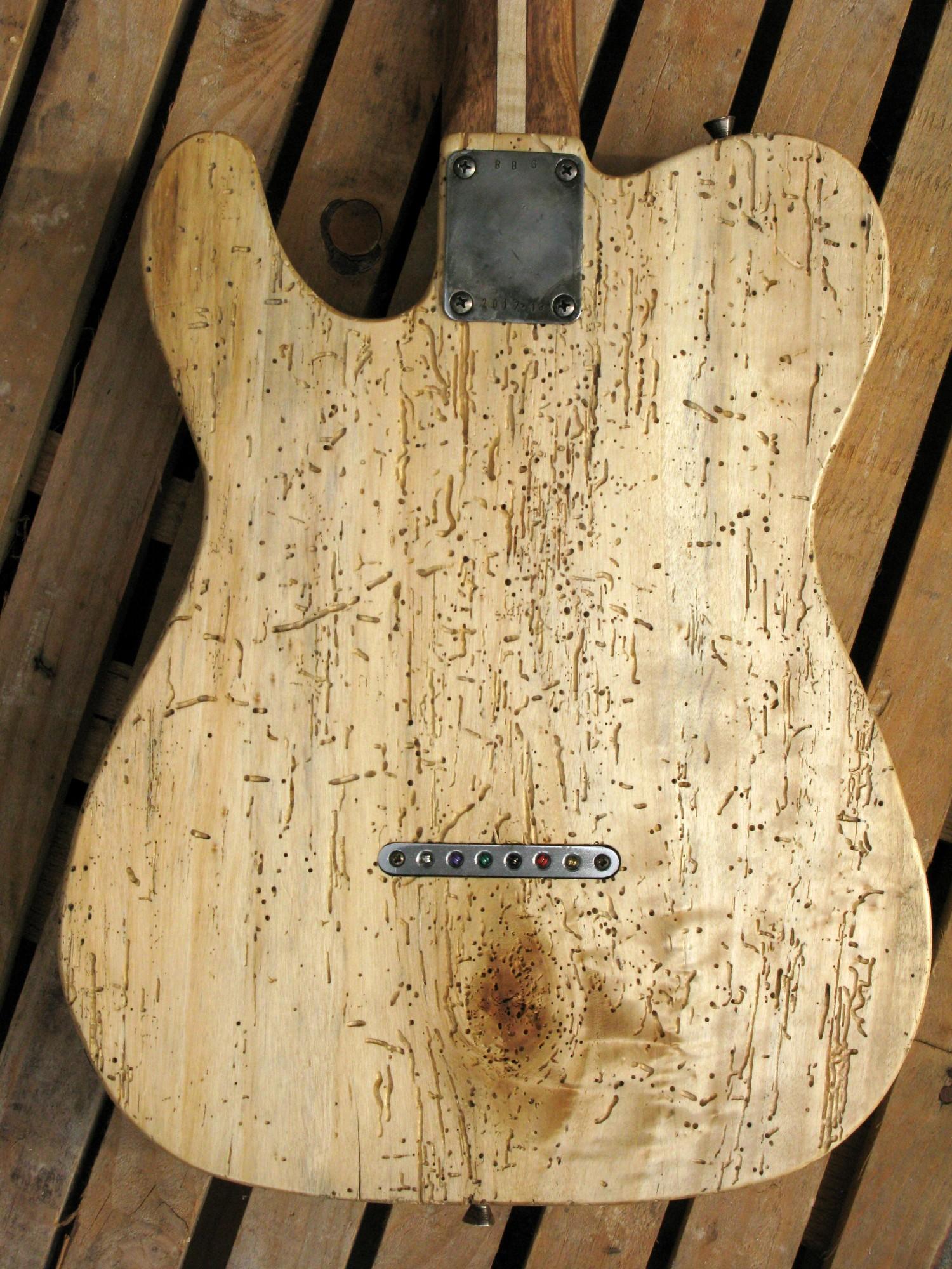 Body di una chitarra Telecaster in pioppo tarlato