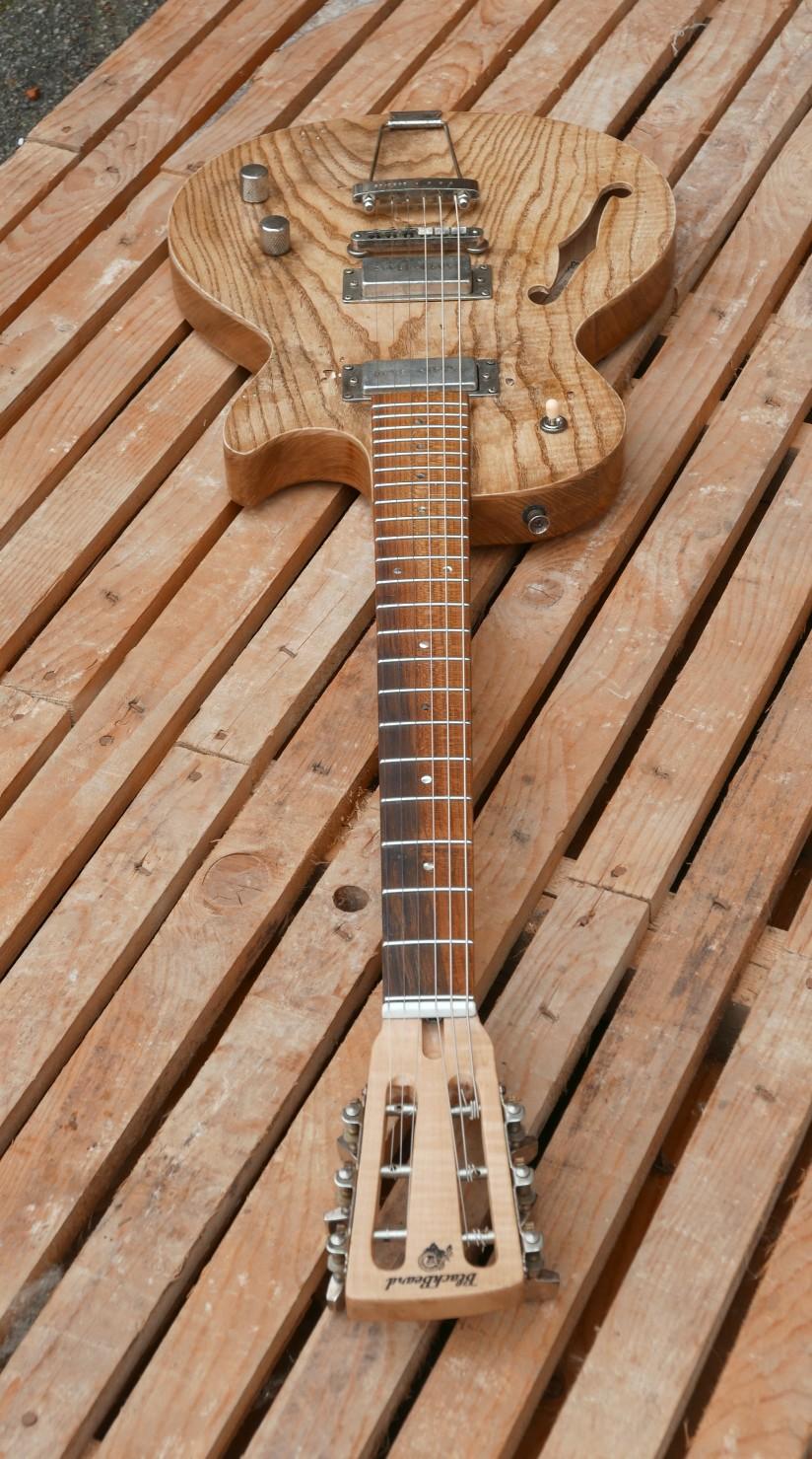 chitarra e manico
