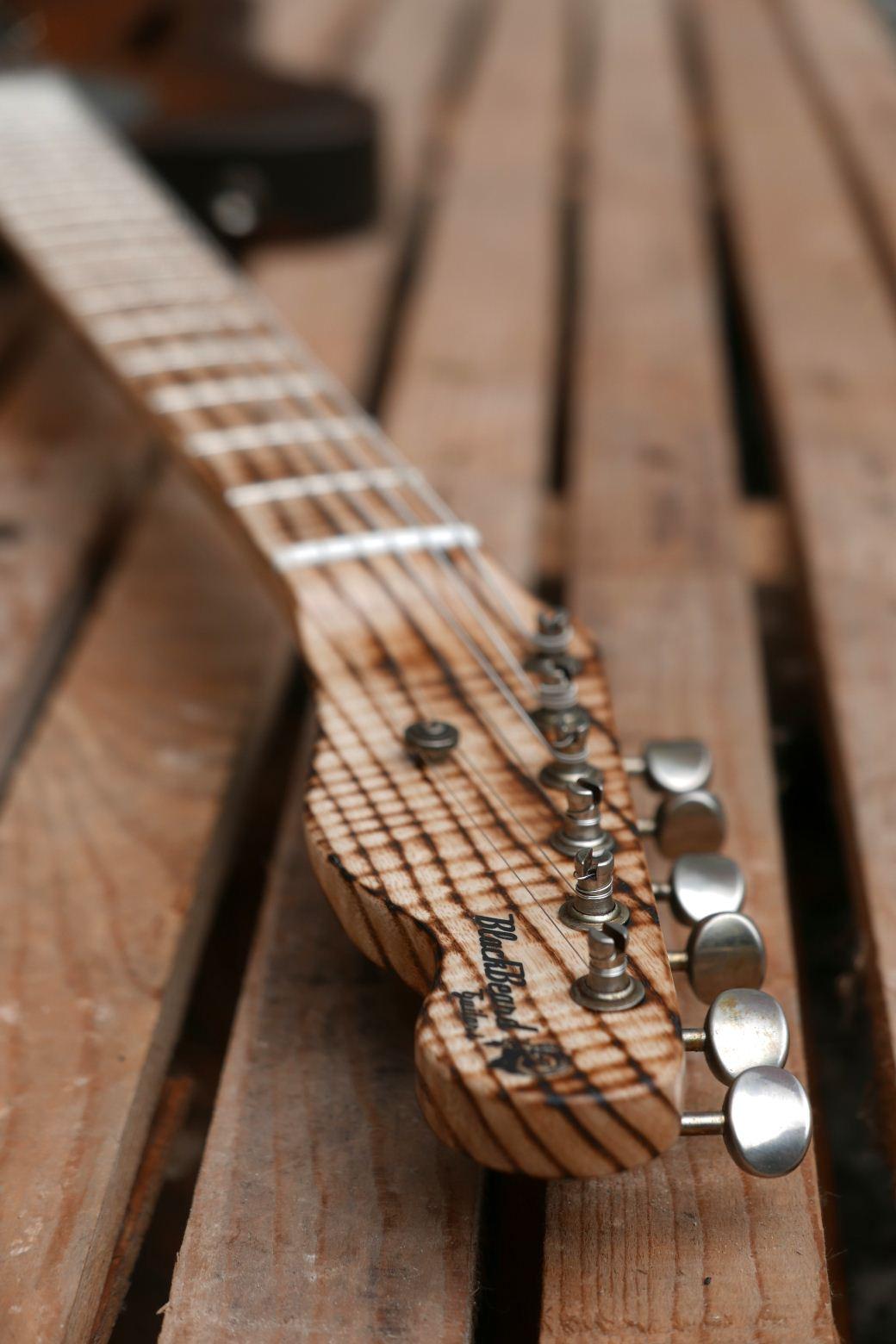 telecaster chitarra paletta